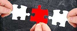 """Titelbild: Zwischenbericht zum Integrationsprojekt <br>""""Wir wachsen zusammen"""""""